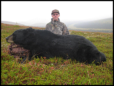 Black Bear on Guided Alaska Hunt
